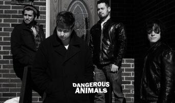 Dangerous Animals Promo Logo